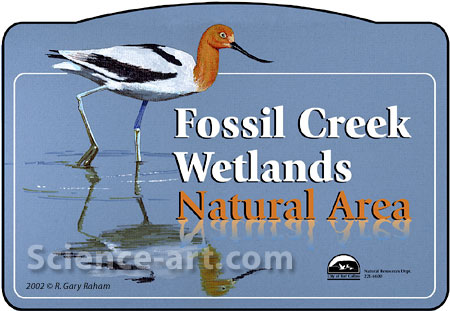 Fossil Creek Wetlands