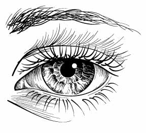 Pen & Ink Eye
