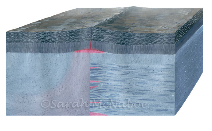 Mid Ocean Ridge Formation, Two Theories
