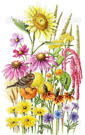 Songbird Flowers Seed Mix