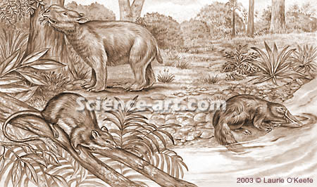 Australian animals of the Pleistocene (1mya)