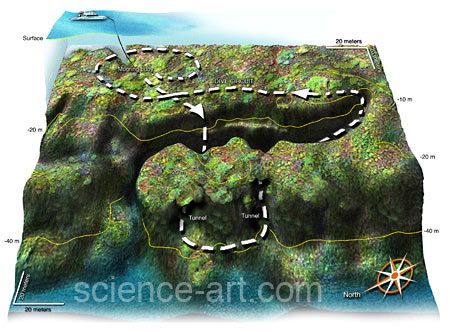 3D map of coral reef dive site