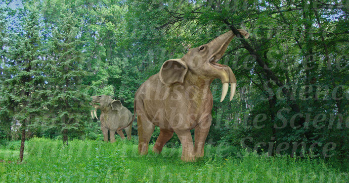 Deinotherium, an early elephant