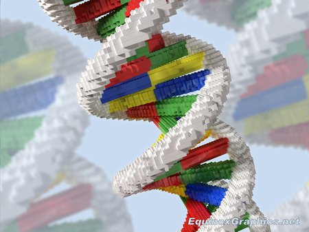 Building Blocks of Life (Lego DNA)