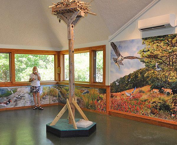 View of Audubon murals in place