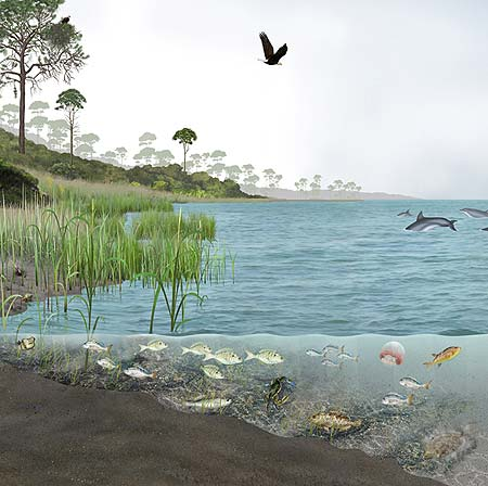 Apalachicola Bay section of mural