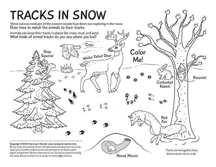 Tracks in Winter coloring page