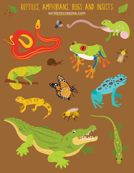 Reptile, Amphibian, Bug, and Insect Spot Art