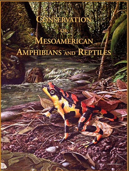 Book Cover: Conservation of Mesoamerican...