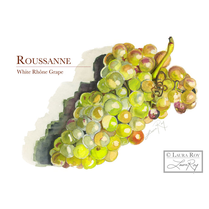 Roussanne Wine Grapes
