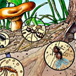 Nutrient Cycle illustration