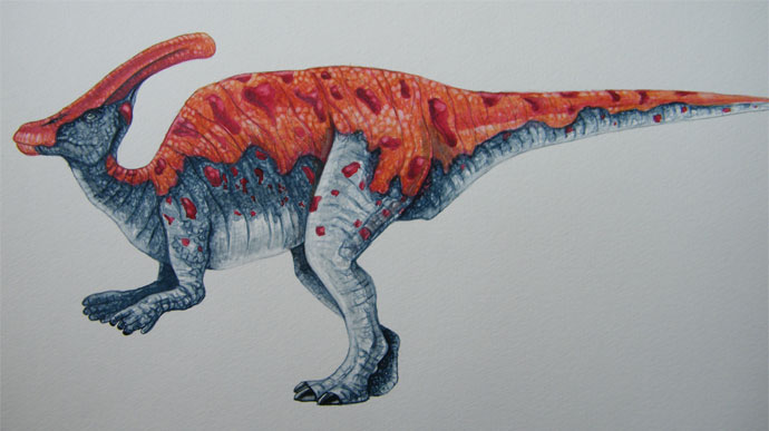 Watercolor of Parasaurolopus