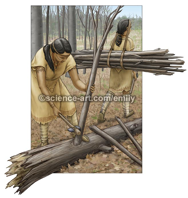Neutral Nation women collecting firewood
